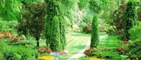 Изграждане на градини в Русе