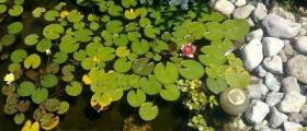 Изграждане на изкуствени водоеми в Лясковец