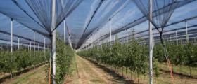 Изграждане системи против градушка и слънце в Бургас