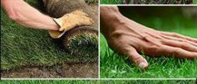 Изграждане зелени площи в Русе