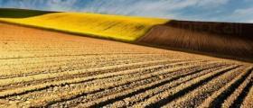 Изкупува земеделска земя в Северна и Южна България