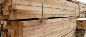 Изкупуване дървени трупи Варна