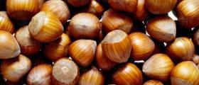 Изкупуване и преработка на ядки в Соколица-Карлово