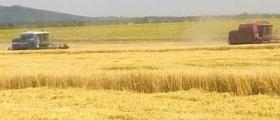 Жътва и събиране на земеделска продукция Светлен-Попово
