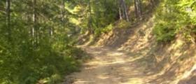 Контролна дейност по охрана на гори в Сливен