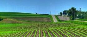 Купува земеделски земи в област Търговище