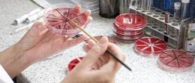Лабораторни изследвания