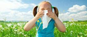 Лечение алергичен ринит в София-Център
