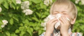 Лечение алергии в Пловдив-Център