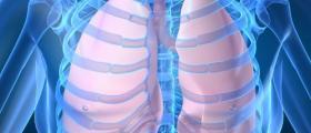 Лечение белодробни заболявания във Видин