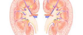 Лечение на бъбречни болести в Казанлък