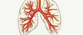 Лечение на бронхиална астма в Пловдив
