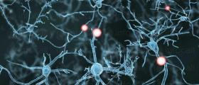 Лечение на множествена склероза в София-ВМА