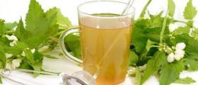Лечение с чай във Варна