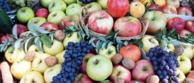 Лечение с плодове във Варна