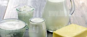 Млекопреработка в Кирилово-Елхово