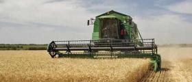 Обработка на земеделска земя в Жълти бряг-Хасково