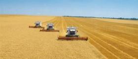 Обработка на земеделска земя в Пет Могили-Шумен