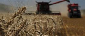 Обработка на земеделска земя в Царевец-Свищов