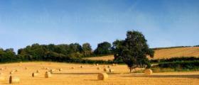 Обработване на земя в област Пазарджик