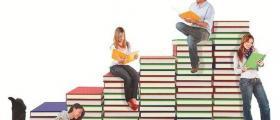 Образование в община Брегово