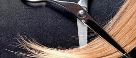 Обучение по фризьорство