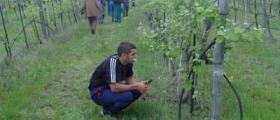 Обучение по Механизация на селското стопанство