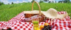Организиране на пикник в Асеновград
