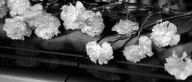 Организиране на погребения в Долна Митрополия