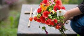 Организиране на погребения в Ловеч