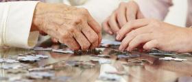Организиране свободното време на възрастни хора в община Своге