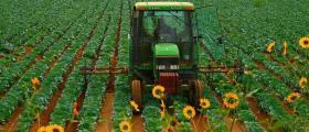Отглеждане на земеделска продукция в община Аврен