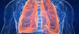 Пневмология и фтизиатрия във Варна