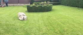 Поддържане зелени площи в Добрич и Варна - Ландшафт ООД