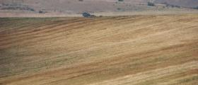Покупко-продажба на земеделска земя в Пловдивска област