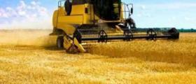 Покупко-продажба земеделска земя Североизточна България