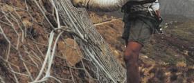 Поставяне на защитни мрежи в Русе