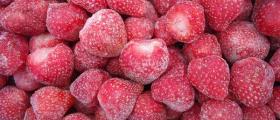 Преработка на замразени плодове и зеленчуци в Костенец-София