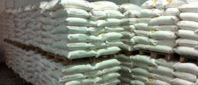 Преработка на зърнени култури в Дулово