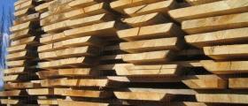Преработка широколистна дървесина в Монтана