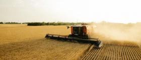 Преработване и съхранение на селскостопанска продукция в Дулово