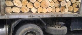 Превоз на дърва в Крайници-Дупница