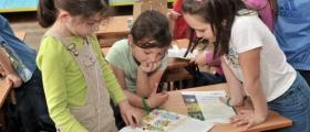 Прием на ученици в община Вълчедръм