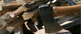 Продажба дърва за огрев в Плевен - Ракита
