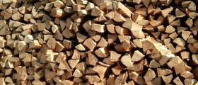 Продажба на дърва за огрев в Дупница
