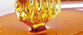 Продажба на мед и пчелни продукти в Раковски