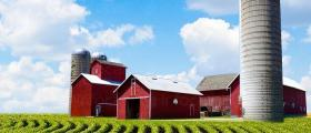 Продажба на земеделска продукция в община Аврен