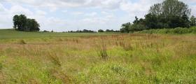 Продажба на земеделска земя в Русе