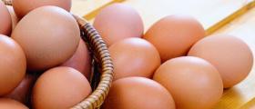 Производство и продажба на яйца за консумация Габрово, Севлиево, Трявна