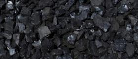 Производство и продажба на въглища Донбас в София-Манастирски ливади - ТЕРМ И КО